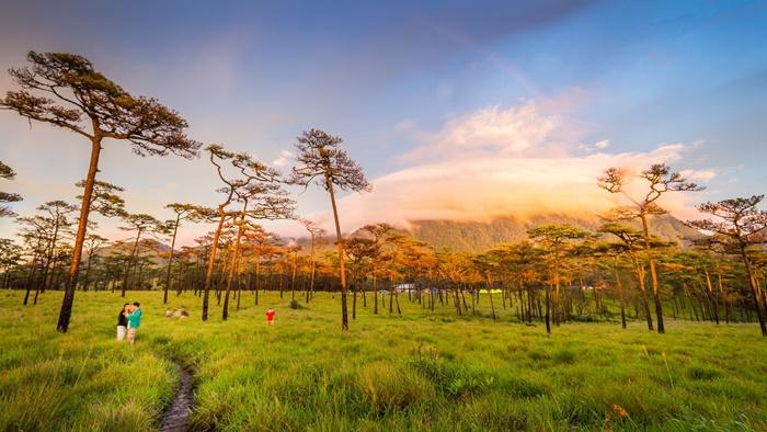 ท่องเที่ยวอุทยานแห่งชาติภูสอยดาว จังหวัดอุตรดิตถ์